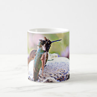 Pastel Hummer on Water Fountain Coffee Cup
