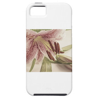 Pastel Lilly. iPhone 5 Covers