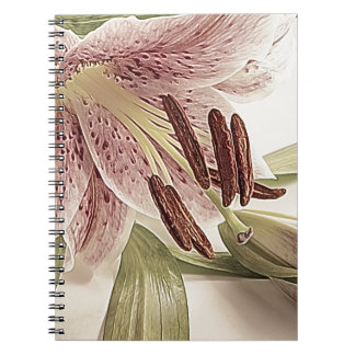Pastel Lilly. Notebook