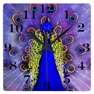 Pastel Peacock Blue Bird Square Wall Clock
