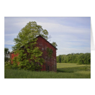 Pastoral Barn Notecard Stationery Note Card