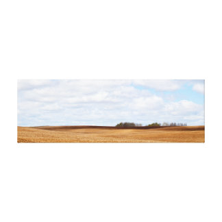 Pastoral Field Canvas