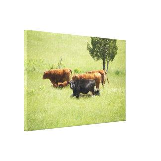 Pastoral Gallery Wrap Canvas