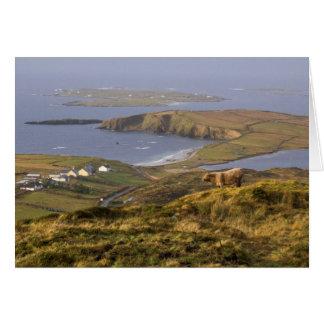 Pastoral Irish Coast Note Card