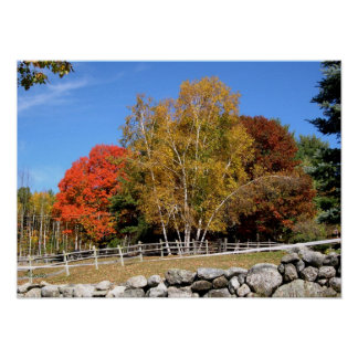 Pasture Trees in Autumn Poster