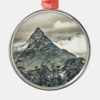 Patagonia Forest Landscape, Aysen, Chile Metal Ornament
