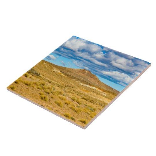 Patagonian Landscape Scene, Argentina Tile