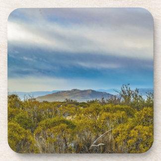 Patagonian Landscape Scene, Santa Cruz, Argentina Coaster