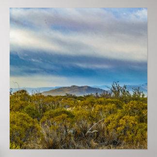 Patagonian Landscape Scene, Santa Cruz, Argentina Poster
