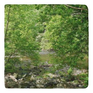 Patapsco River View Maryland Nature Photography Trivet