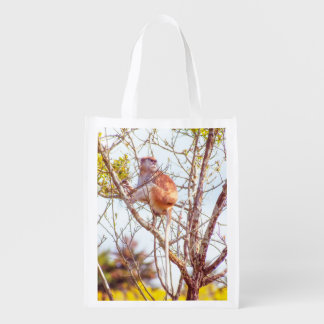 Patas is Up a Tree Reusable Grocery Bag