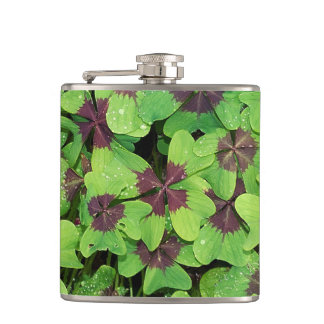 Patch of Four Leaf Clover, Sorrel, with Dew Hip Flask