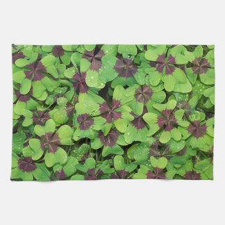 Patch of Four Leaf Clover, Sorrel, with Dew Kitchen Towel