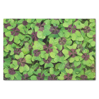 Patch of Four Leaf Clover, Sorrel, with Dew Tissue Paper