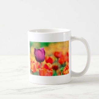 Patch with tulips mugs