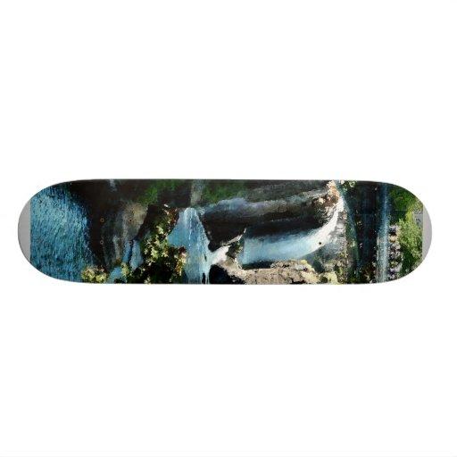 Paterson Falls Skateboard Decks