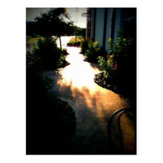 Path of Dreams Postcard