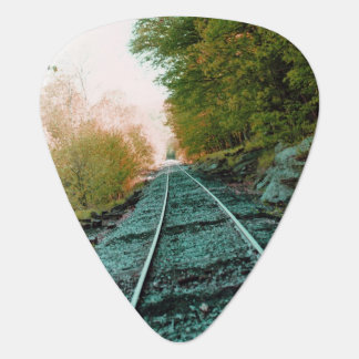 Path of Solitute Guitar Pick