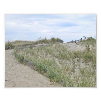 Path through the dunes at Nauset Beach on Cape Cod Photo Print