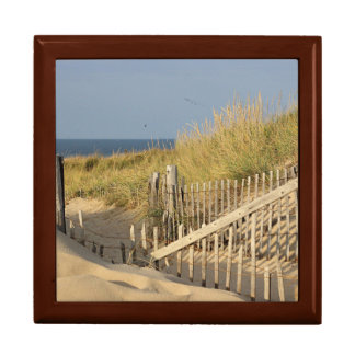 Path through the dunes to Race Point Gift Box