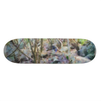 Path through the jungle skate board deck