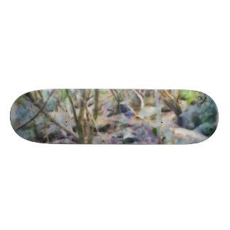 Path through the jungle skateboard