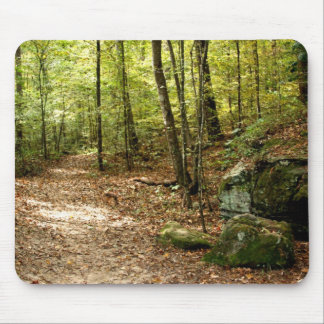Path Through Woods Mouse Pad