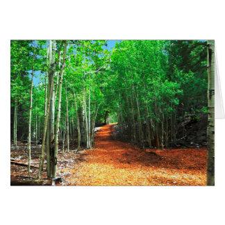 Path Thru the Aspens, Mt. Charleston, Blank Inside Card