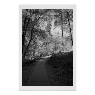 Path to Oak Creek Poster