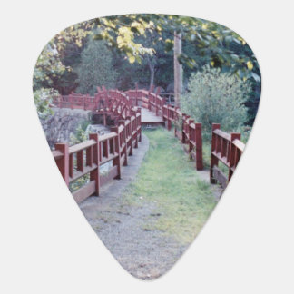 Path Unknown Guitar Pick