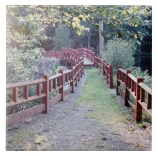 Path Unknown Tiles
