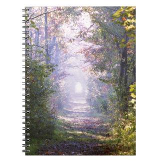 Pathway Notebooks
