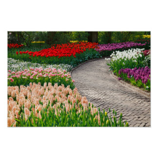 Pathway Through Colorful Flower Garden Poster