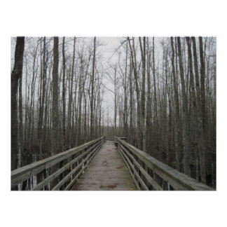 Pathway Through the Wilderness Poster