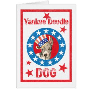 Patriotic American Hairless Terrier Card
