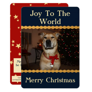 Patriotic Christmas Photo Add Image Blue Red Gold Card