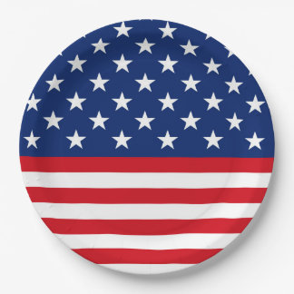 Patriotic flag pattern party paper plate July Four 9 Inch Paper Plate