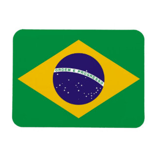Patriotic flexible magnet with flag of Brazil