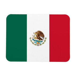 Patriotic flexible magnet with flag of Mexico