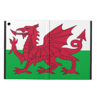 Patriotic ipad case with Flag of Wales