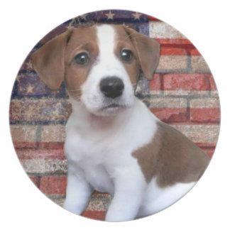 Patriotic Jack Russell Terrier Party Plates