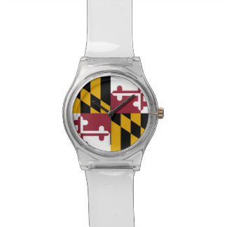 Patriotic kids watch with Flag of Maryland