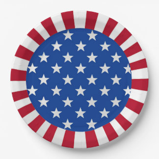 Patriotic Paper Plate 9 Inch Paper Plate