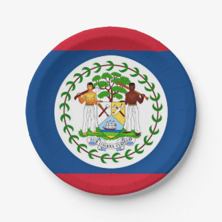 Patriotic paper plate with flag of Belize