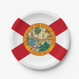 Patriotic paper plate with flag of Florida