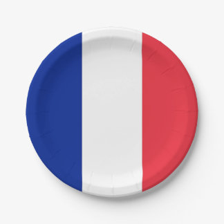 Patriotic paper plate with flag of France