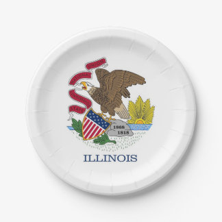 Patriotic paper plate with flag of Illinois