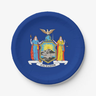 Patriotic paper plate with flag of New York