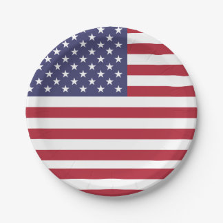 Patriotic paper plate with flag of USA.