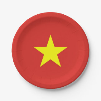 Patriotic paper plate with flag of Vietnam